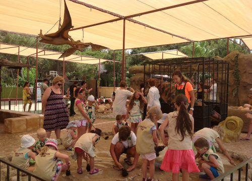 Kids Dino Dig